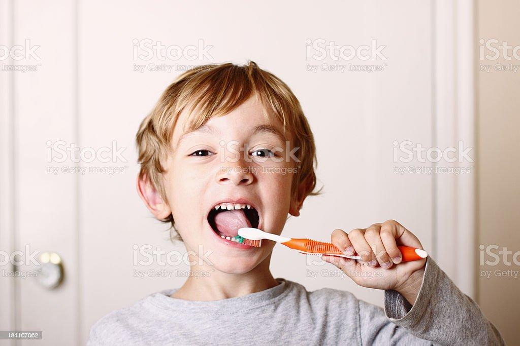 Junge Zähne – Foto