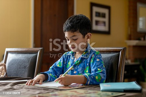 858130938 istock photo Young Boy Doing Homework 1133418928