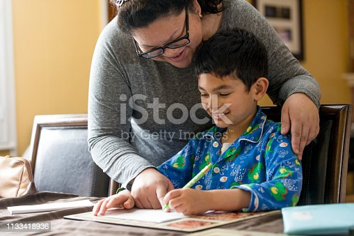 858130938 istock photo Young Boy Doing Homework 1133418936