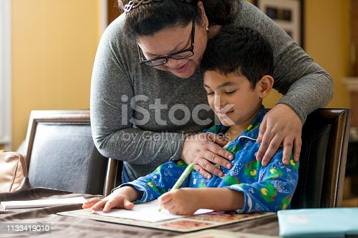 858130938 istock photo Young Boy Doing Homework 1133419010