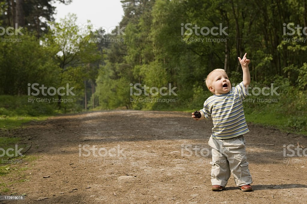 Young boy enjoying the out door life pointing at plane royalty-free stock photo