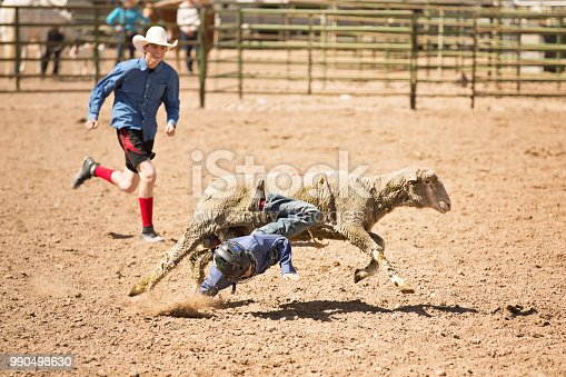 Little boy falling face first off a sheep while mutton busting at a summer rodeo. Rodeo clown running up to help.