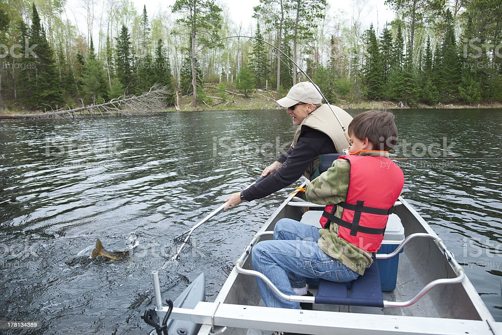 Young boy fisherman catches a walleye stock photo