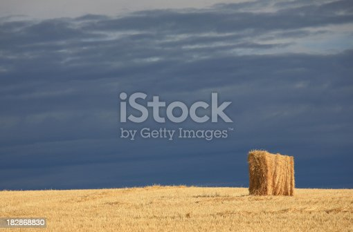 istock Young Boy Flexing Muscles on the Beach 182868830