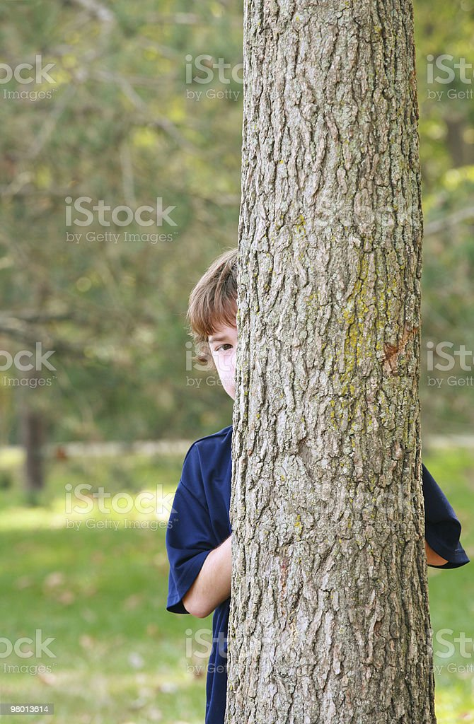 Young boy hiding behind a tree in a park royalty free stockfoto