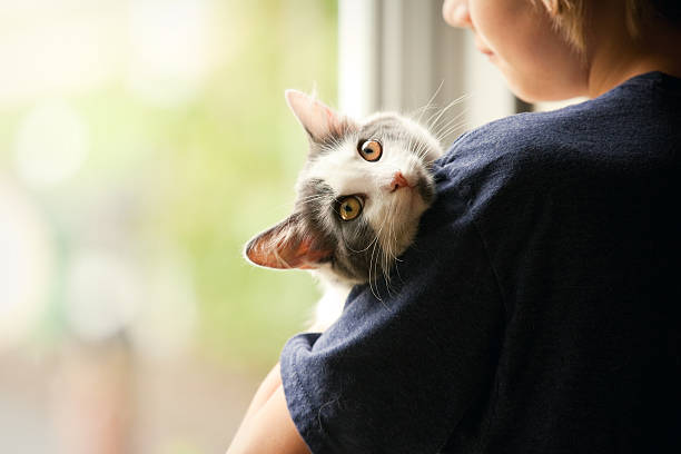 Young boy holding his kitten picture id492812844?b=1&k=6&m=492812844&s=612x612&w=0&h=swy8fjmfcupxi8ijiuepwsiegfpj8idkfliatvhjr9c=