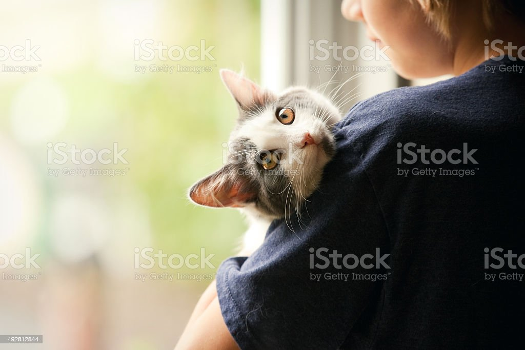 Young Boy Holding His Kitten stock photo