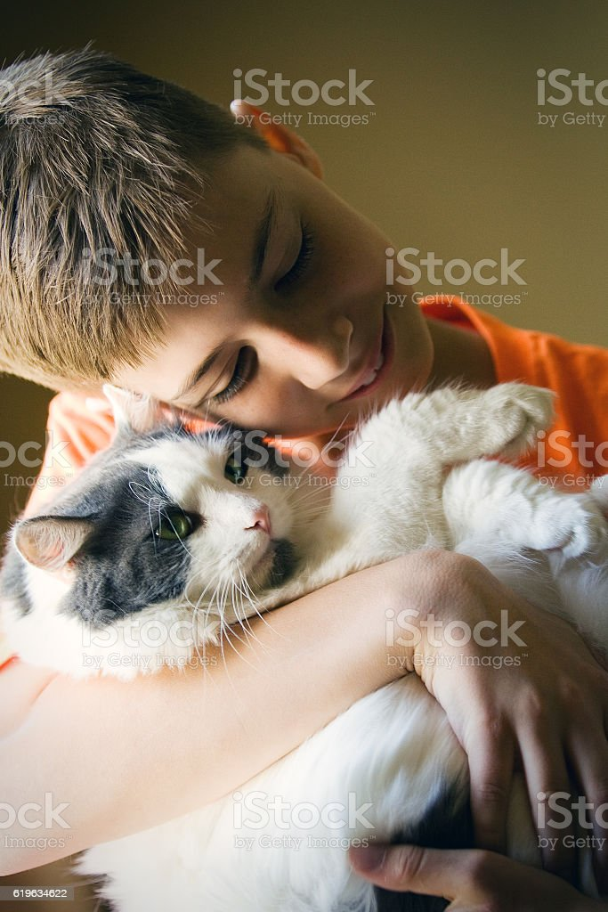 Young Boy Hugging Cat stock photo