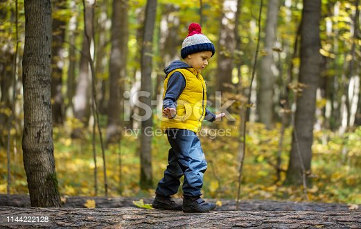 istock Young boy in a vest and hat 1144222128