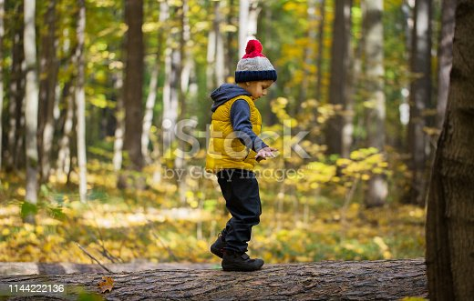 istock Young boy in a vest and hat 1144222136