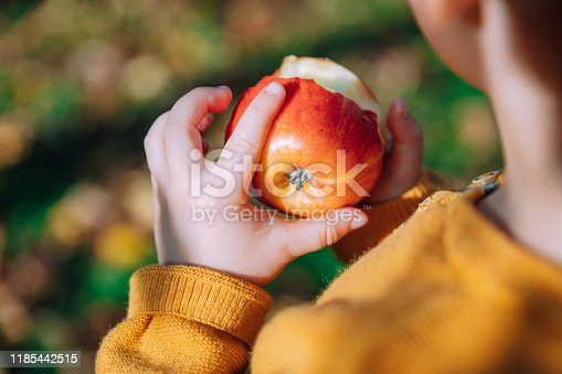 865889676 istock photo young boy in an orchard eating a red apple 1185442515