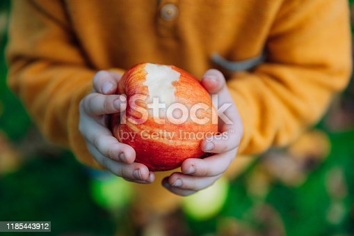 865889676 istock photo young boy in an orchard eating a red apple 1185443912
