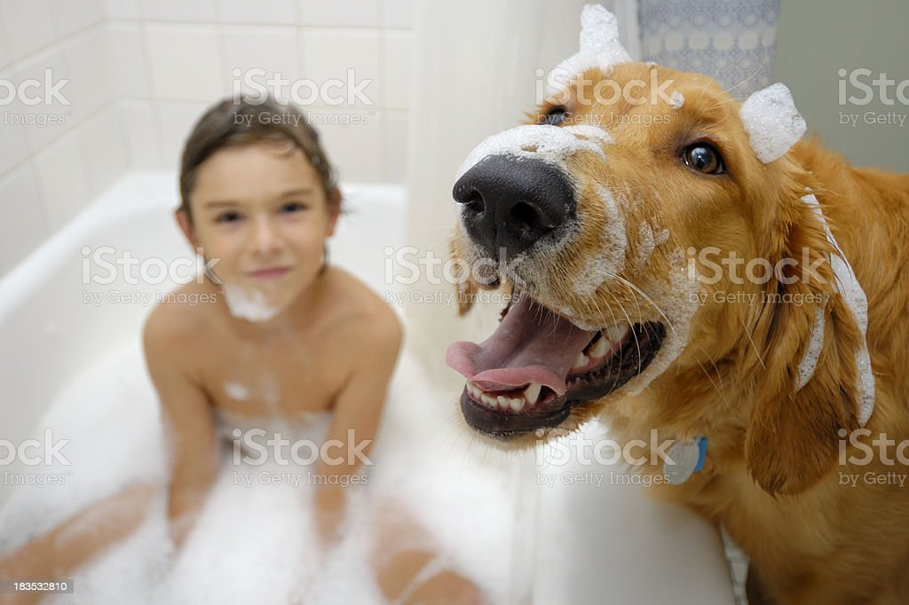 Young boy in bathtub and dog foreground royalty-free stock photo