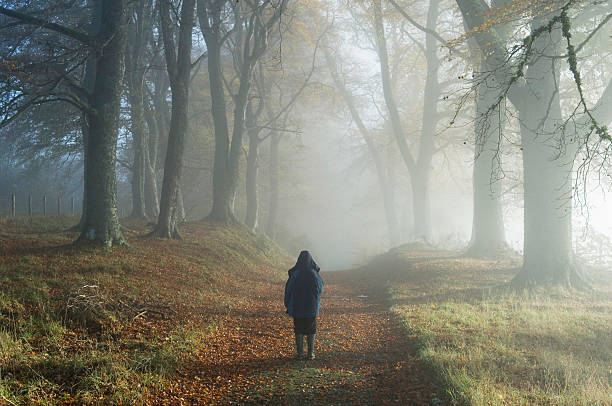 Young boy in misty woodland stock photo