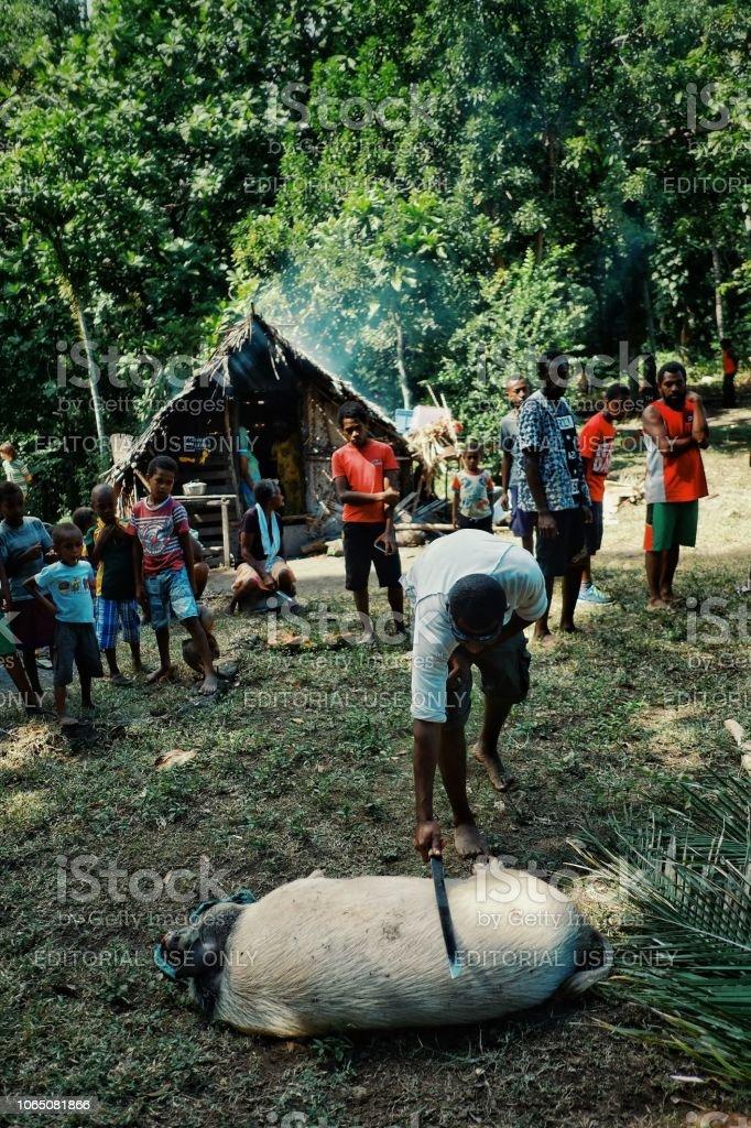 kleiner Junge töten eine gebundene, Schwein für die Feier mit einem Schwert wie Machete vor seinem gewebten Palmenhaus – Foto