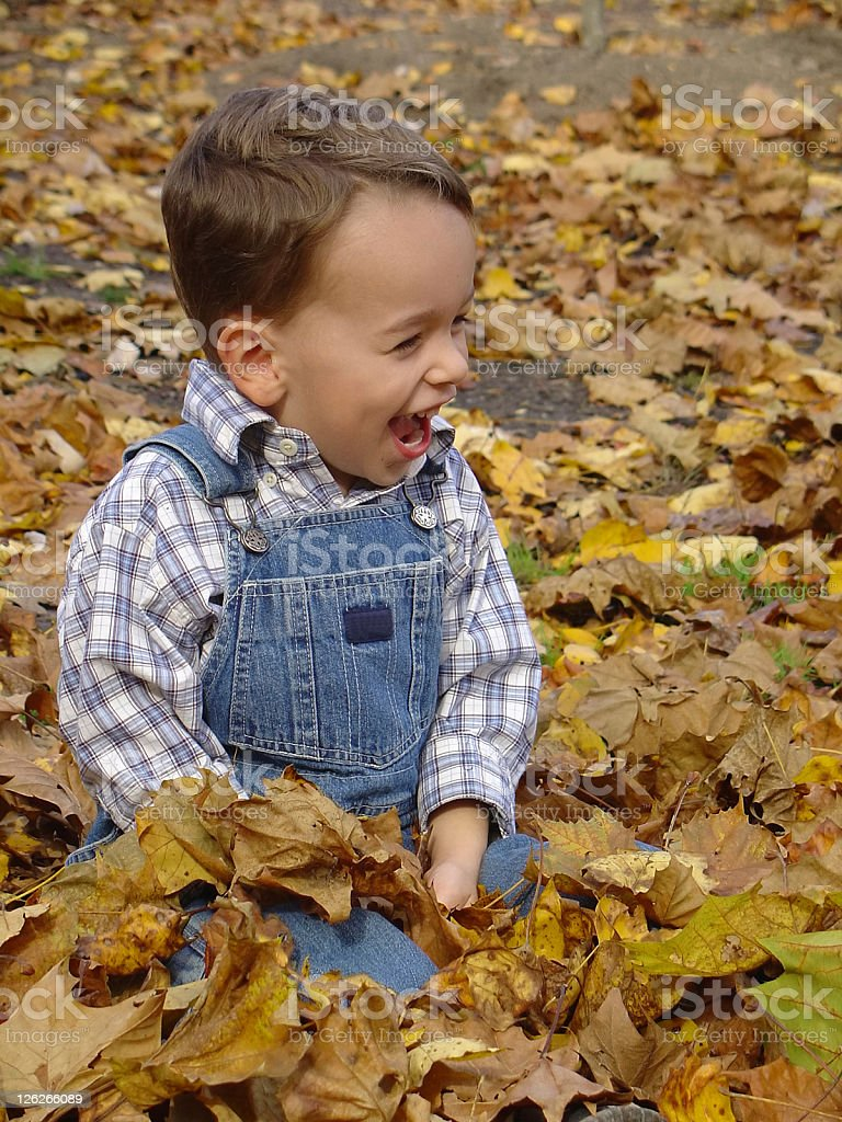 Young boy laughing while playing in the autumn leaves royalty-free stock photo