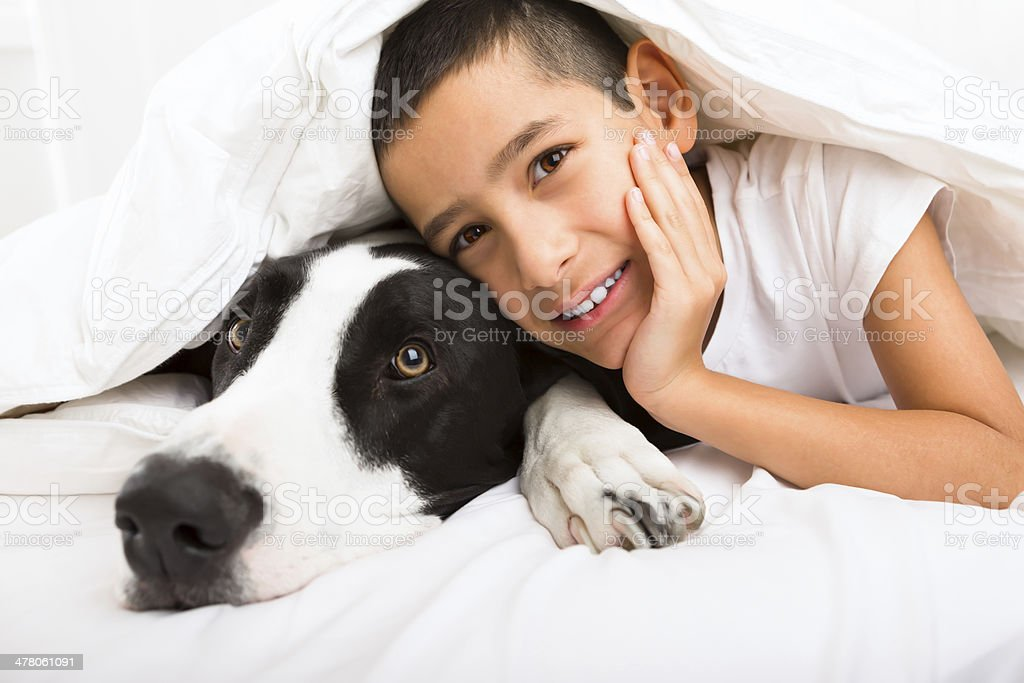Young boy laying in bed with his dog royalty-free stock photo