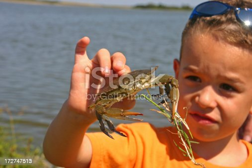 6 year old boy looking at blue crab that he just caught. Image taken on Assateague Island, Virginia.