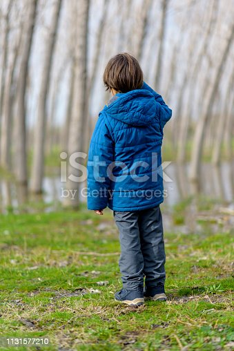 Young boy on woodland path