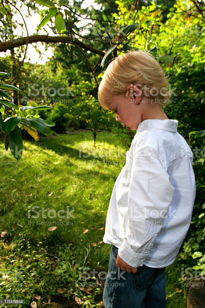 young boy out in nature royalty-free stock photo