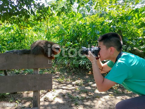 Young boy photographer and Red Titi Monkey