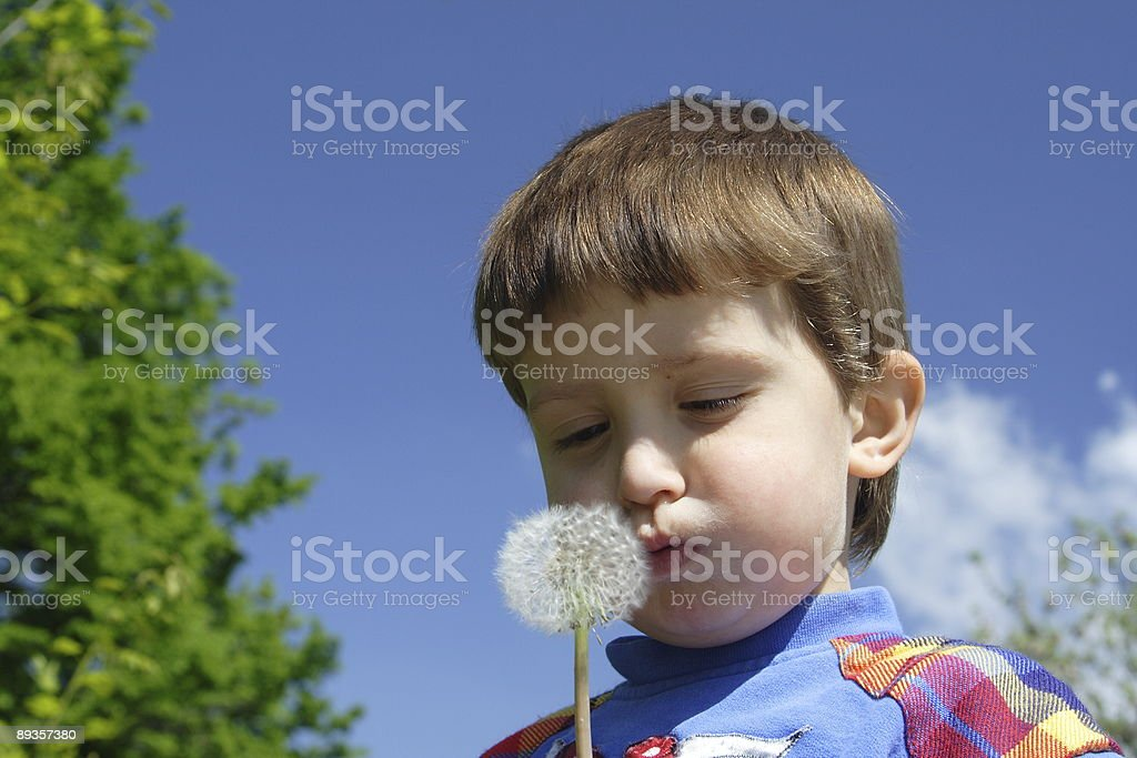 young boy royalty free stockfoto