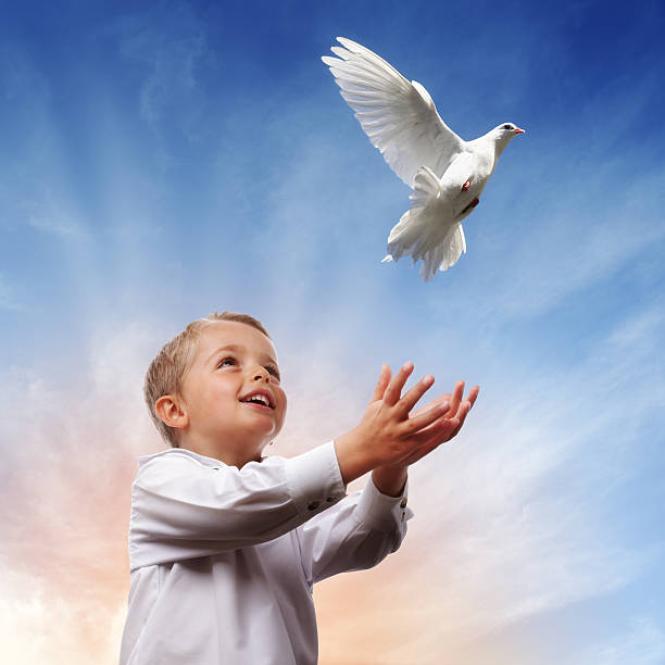 Young boy releasing dove for freedom, peace and spirituality stock photo
