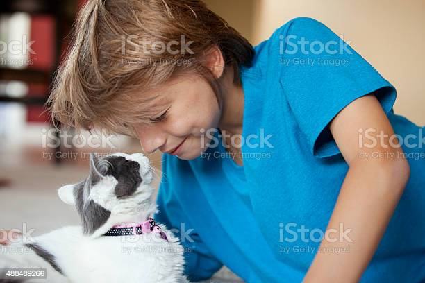 Young boy rubbing noses with his kitten picture id488489266?b=1&k=6&m=488489266&s=612x612&h=be kyy58dastyjcjij63cglj4oldupfo6g6ig8edzde=
