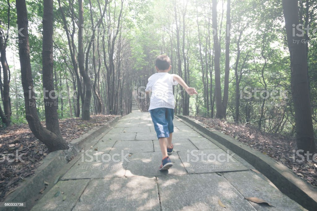 Young boy running in forest stock photo