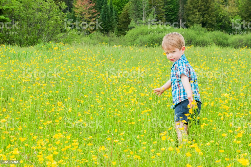 Young boy running, walking and dancing in a field stock photo