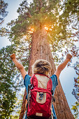 Young Boy Standing In Front Of A Giant Sequoia Tree Hands Raised