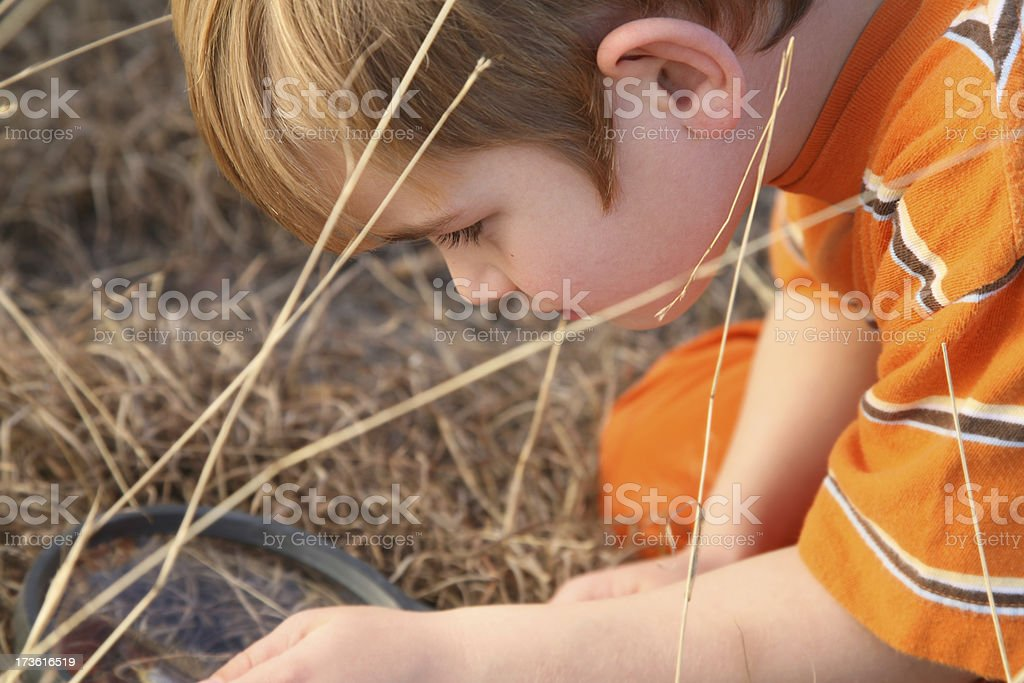 Young Boy Using Magnifying Glass royalty-free stock photo