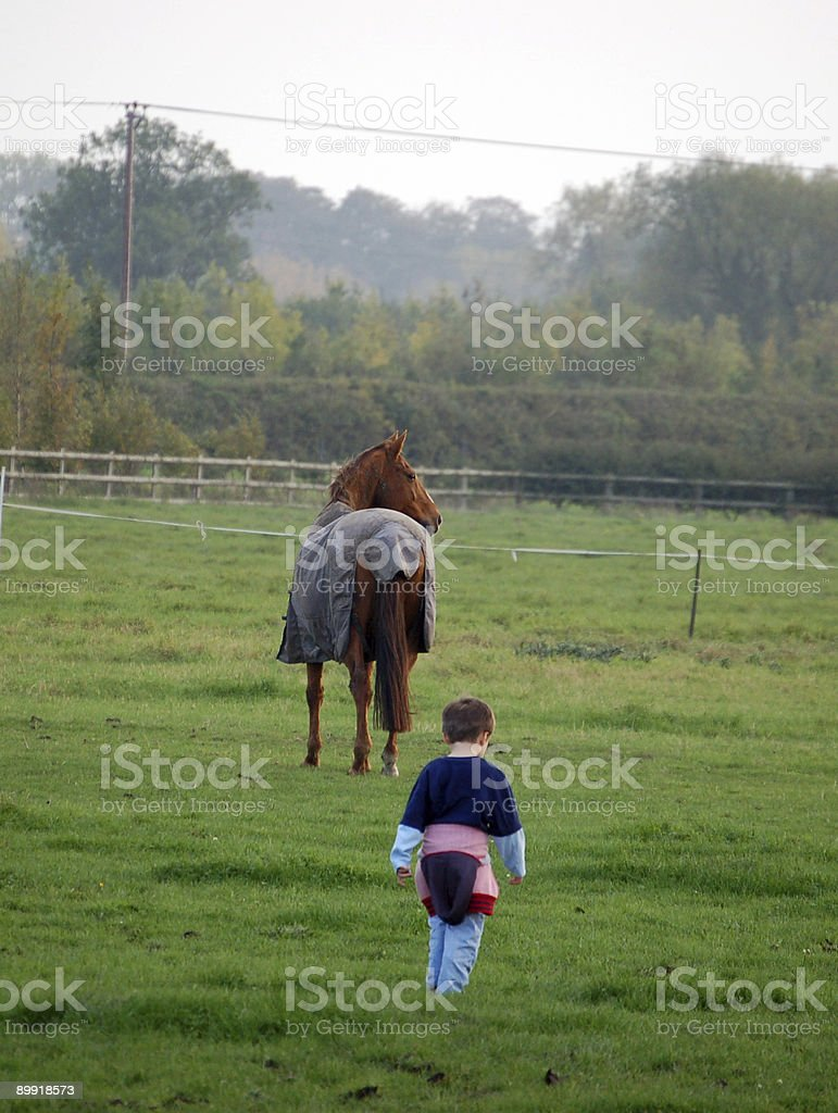 Young boy walking up to horse stock photo