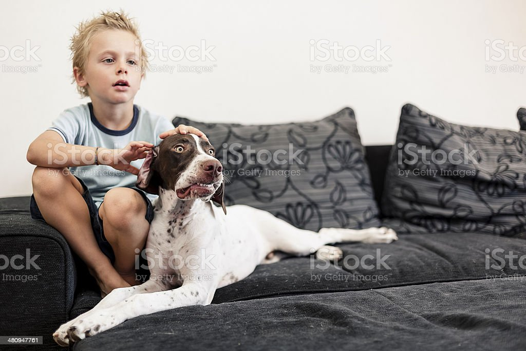Young boy watching TV with his Dog stock photo