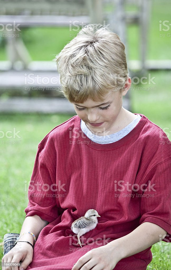 Young Boy with a Chick royalty-free stock photo