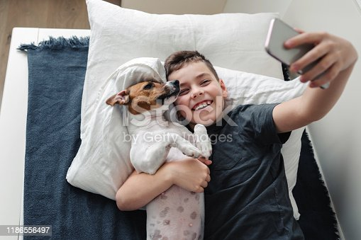 istock A young boy with a dog in a cozy interior. 1186556497