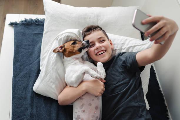 a young boy with a dog in a cozy interior. - bambino cane foto e immagini stock