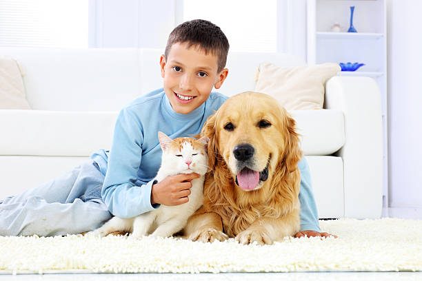 Young boy with dog and a cat picture id183364307?b=1&k=6&m=183364307&s=612x612&w=0&h=omhdqz4ysgrbcrzcpbh8w4tfbdu hmlvbnh0hsnbfdc=