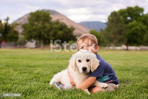 A young boy hugs a young golden labrador retriever puppy while looking at the camera. This toddler is so happy to play at the park with his favorite animal, a dog. Image taken in Utah, USA.