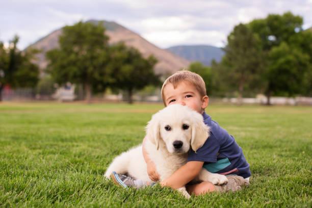 Junge mit Hund – Foto