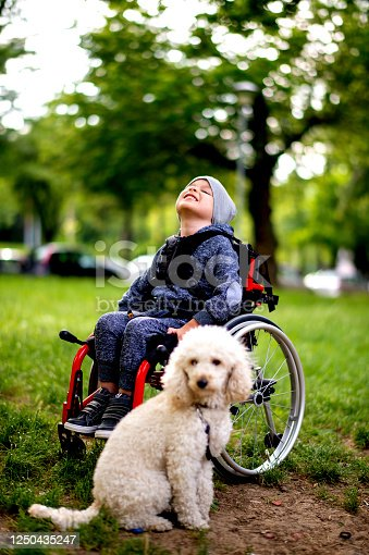 A young boy in wheelchair and puppy while looking at the camera. This toddler is so happy to play at the park with his favorite animal, a dog