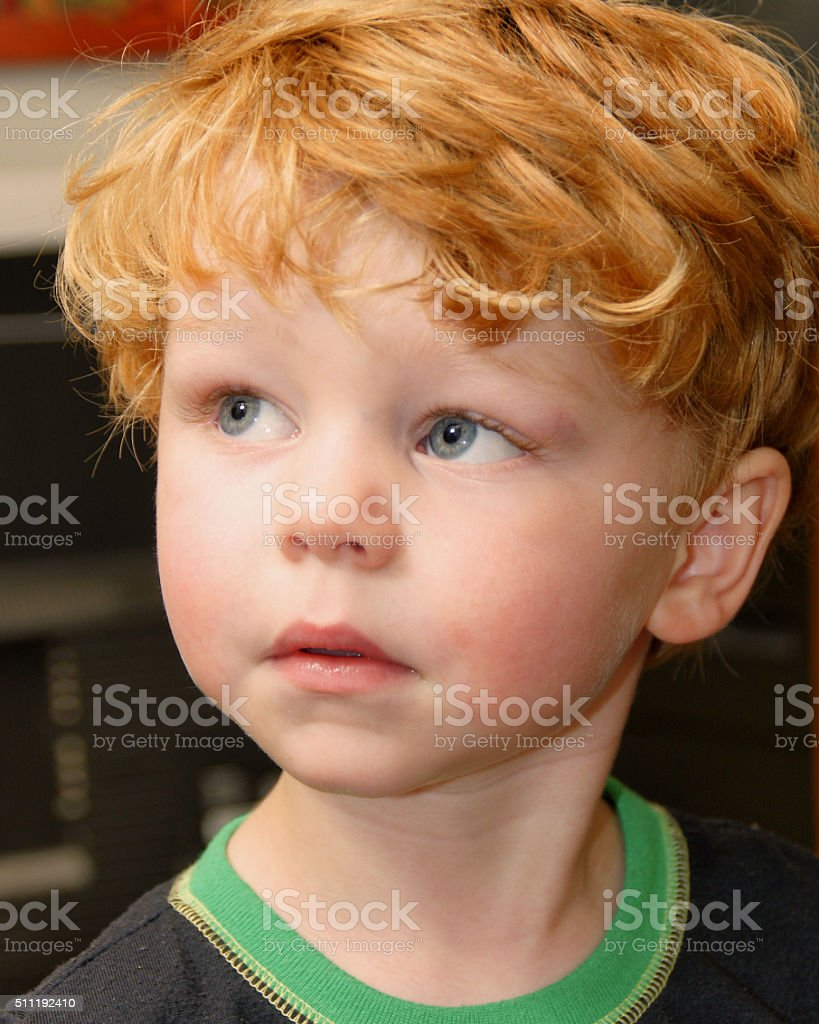 young boy with red hair blue eyes stock photo more. Black Bedroom Furniture Sets. Home Design Ideas