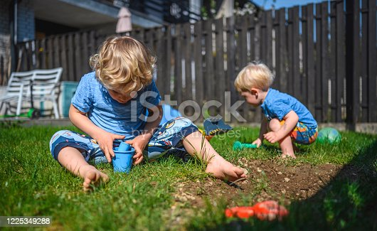 Young blond caucasian brothers playing with mud in home backyard. They are digging and are happy.