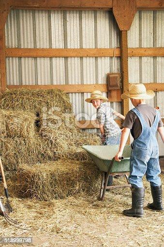 istock Young boys working in barn 518999798