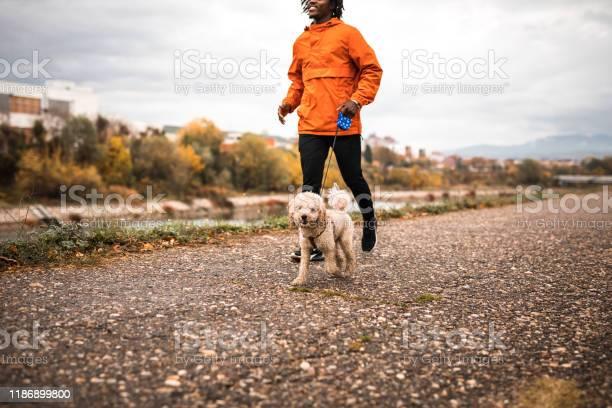 Young brazilian running with dog during autumn morning picture id1186899800?b=1&k=6&m=1186899800&s=612x612&h=gl6oorw2ztx0cbutpw r7mxhmbnotjok5rutbn9wqbs=