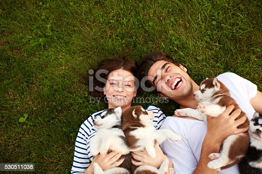 Happy couple lying on grass with husky puppies