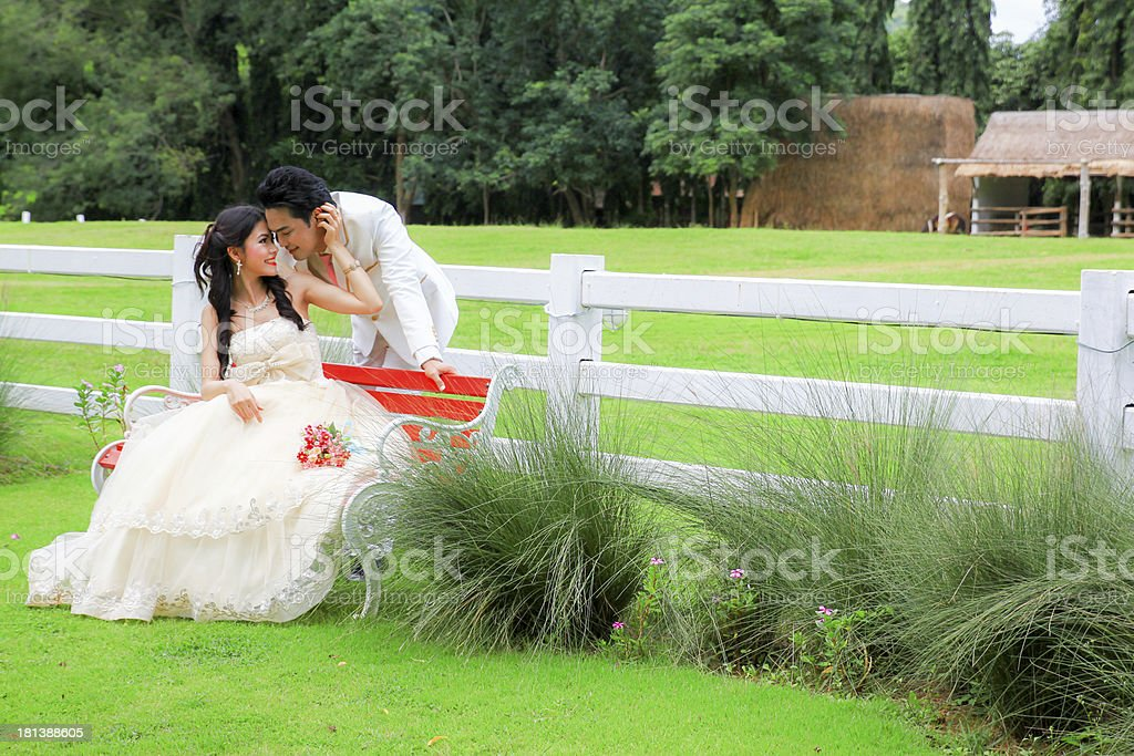 Young bride and groom royalty-free stock photo