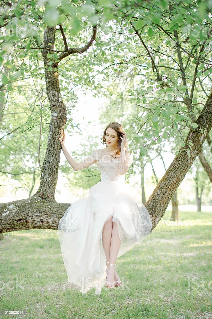Young Bride In Beautiful Wedding Dress Sitting On Tree Outdoors ...