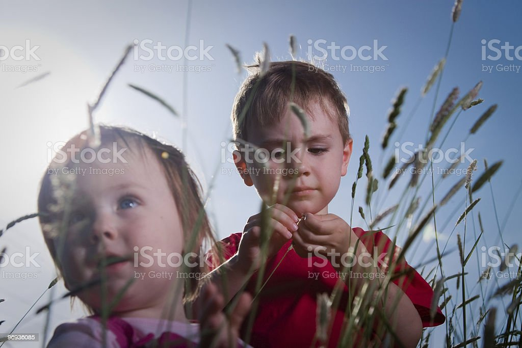 Young Brother and Sister royalty-free stock photo
