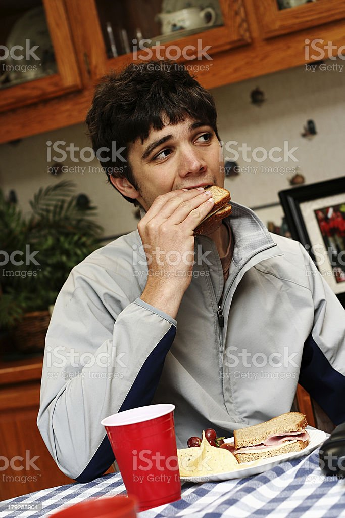 Young Brunette Guy Eating Lunch royalty-free stock photo